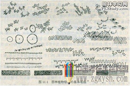 用钢笔画出的图,线条清晰